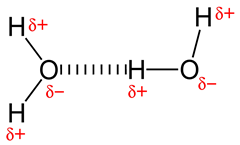 800px-Hydrogen-bonding-in-water-2D