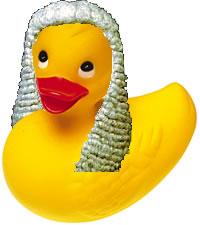 legal-duck-733129