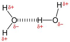 800px-Hydrogen-bonding-in-water-2D